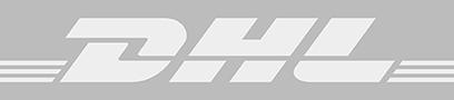 DHL-frachtfuehrer-multiship-dynamics-nav-1